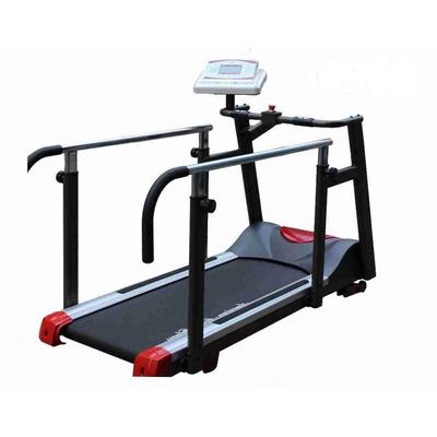 Беговая дорожка American Motion Fitness 8230 без подвеса (фото)